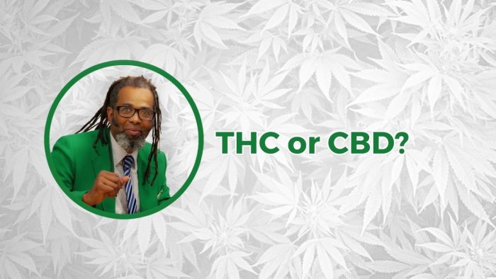 THC or CBD? | Cooking On High