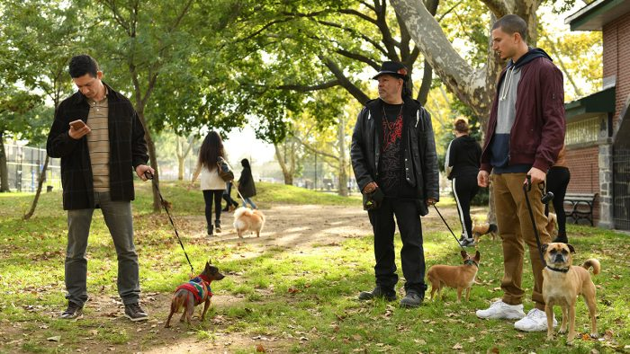 Netflix's Surprise Hit Series 'It's Bruno' is 'Curb Your Enthusiasm' But For Dog People