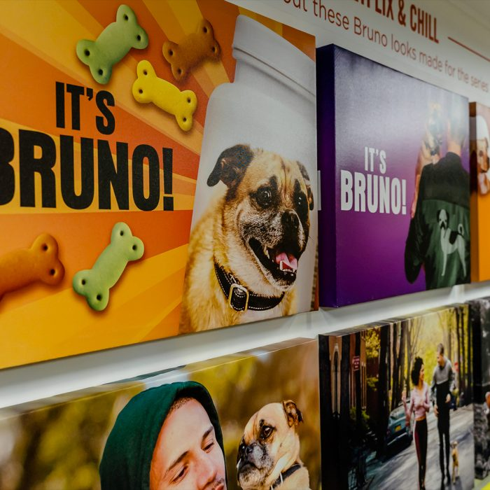 Healthy Spot It's Bruno! Pup-Up Gallery (Los Feliz & Topanga Canyon) | It's Bruno!